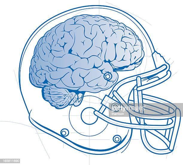 Football Helmet and Brain