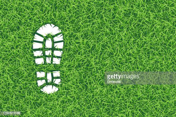 footprint in the grass, realistic vector illustration - shoe print stock illustrations
