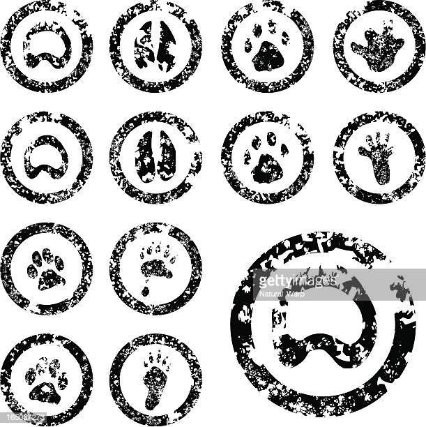 fußabdruck stempel set - 03 von 04 - fuchspfote stock-grafiken, -clipart, -cartoons und -symbole