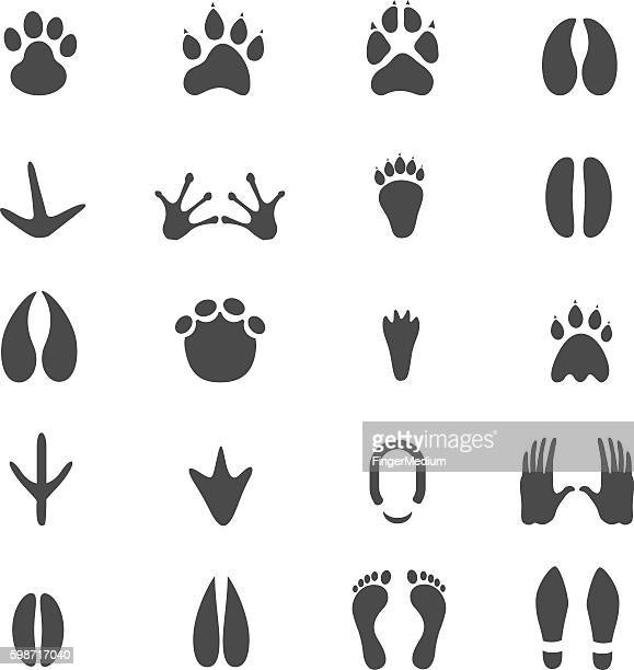 footprints icon set - claw stock illustrations, clip art, cartoons, & icons