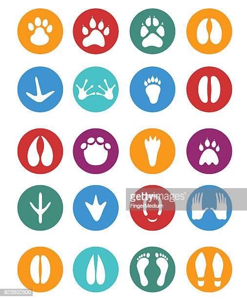 Footprints conjunto de ícones