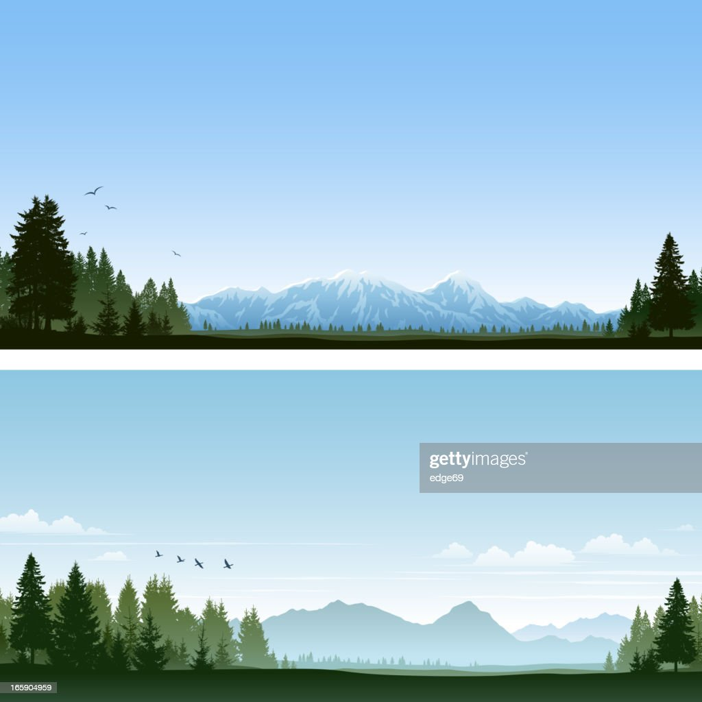 Forest and Mountains : stock illustration