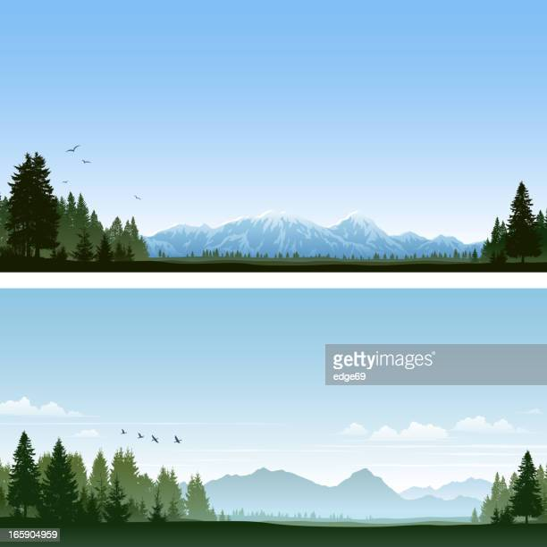 forest and mountains - tree stock illustrations, clip art, cartoons, & icons