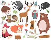 Forest Animal Collections Set