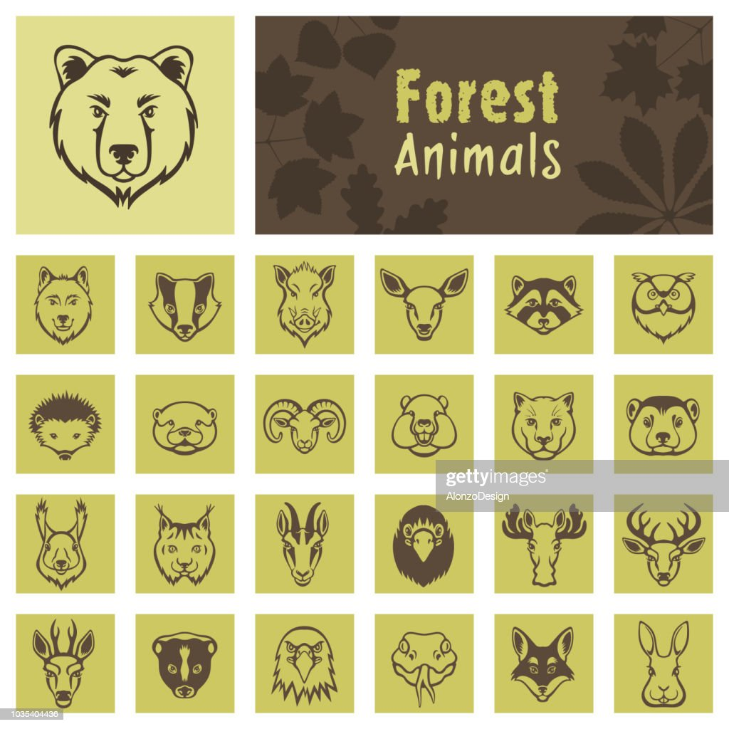 Forest Animal Face Icons