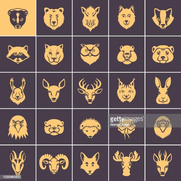 illustrations, cliparts, dessins animés et icônes de forêt des visages animaux icon set - ram animal