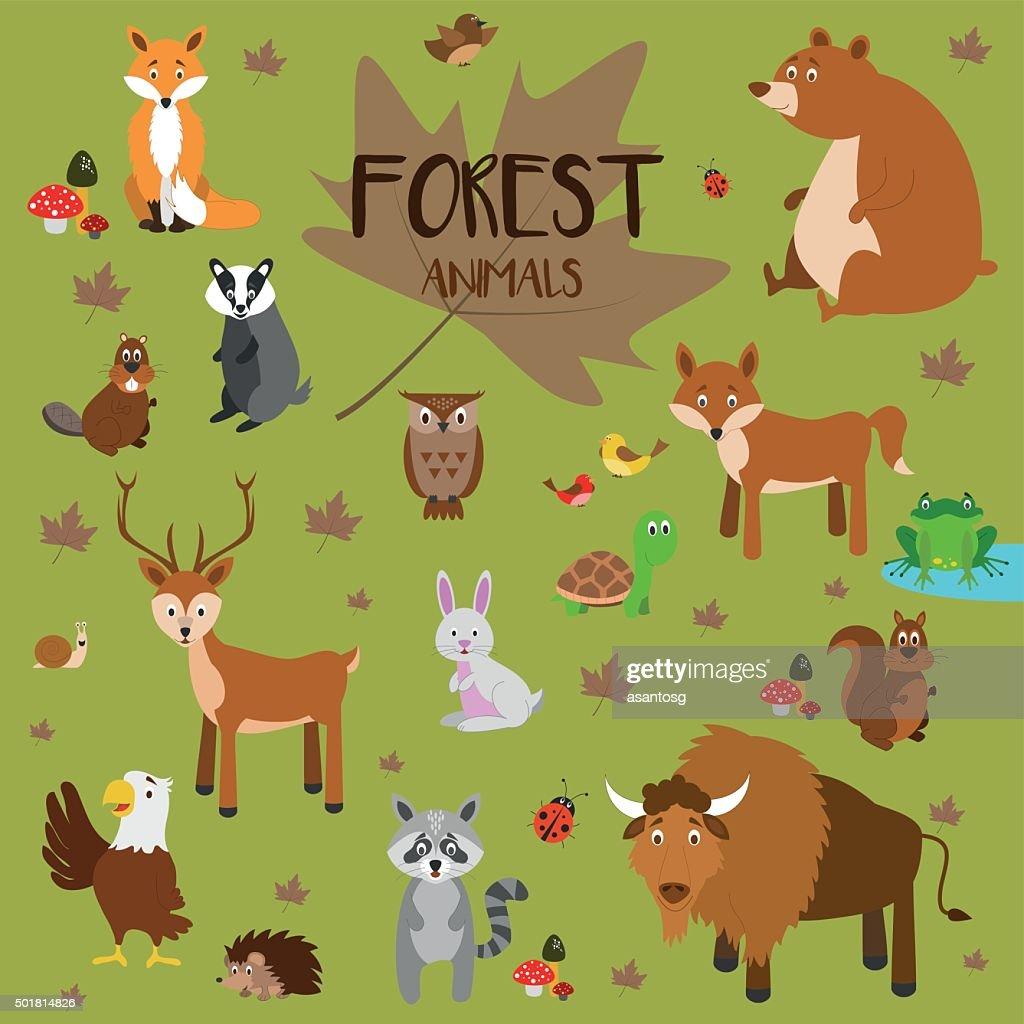 Forest animals Vector Illustration Set