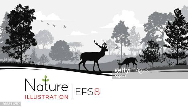 鹿の森の背景