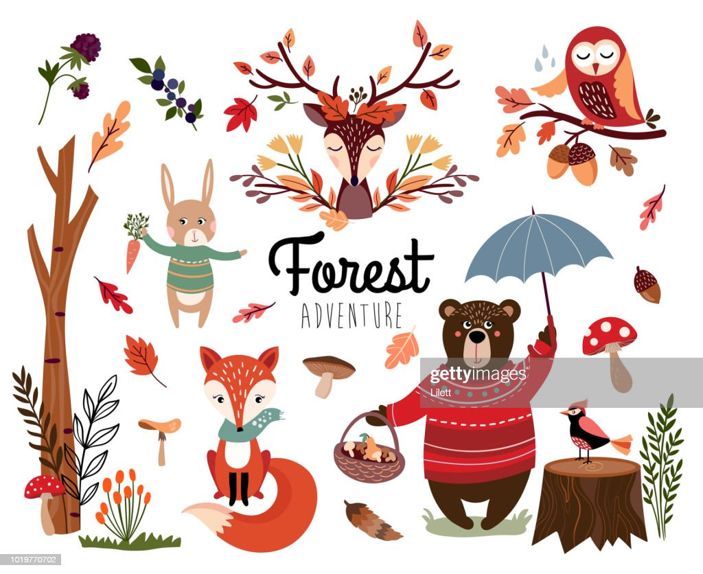 Forest elements collection with autumnal items