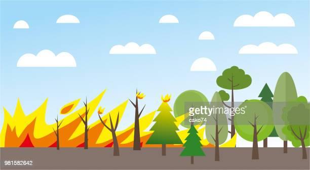 ilustraciones, imágenes clip art, dibujos animados e iconos de stock de ilustración de incendios forestales - incendio forestal