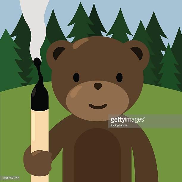 ilustraciones, imágenes clip art, dibujos animados e iconos de stock de bosque de seguridad contra incendios - incendio forestal