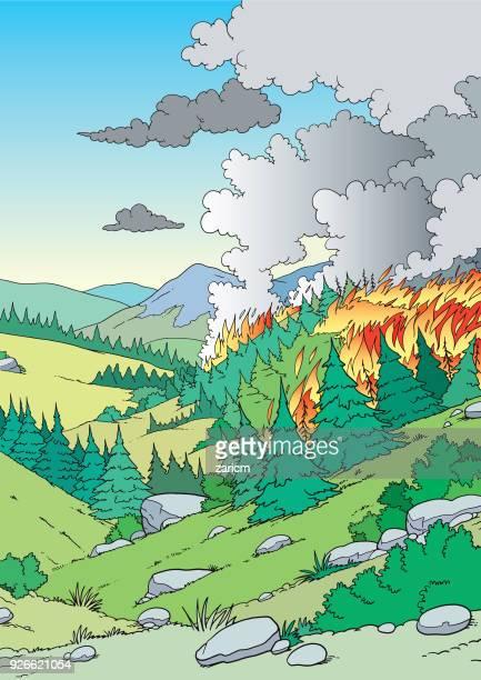 ilustraciones, imágenes clip art, dibujos animados e iconos de stock de incendio forestal - incendio forestal