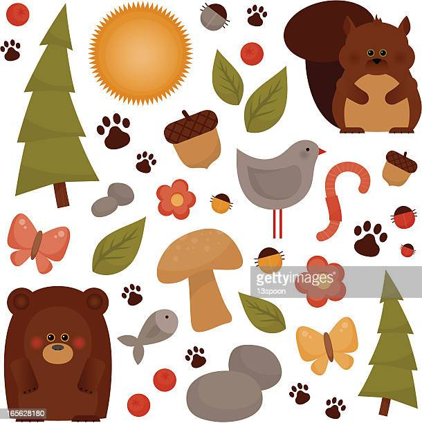 forest fun - squirrel stock illustrations