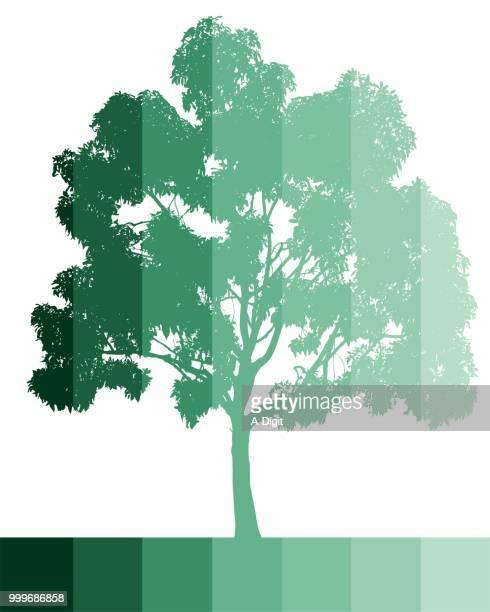 60点の一本の木のイラスト素材クリップアート素材マンガ素材