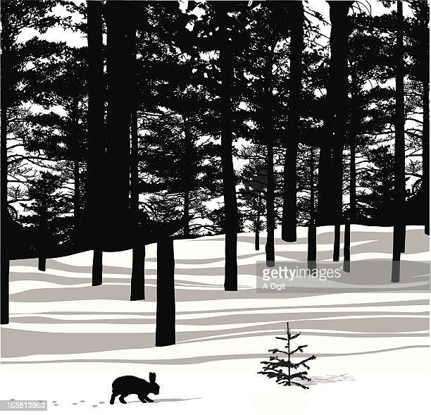 forest hare vector silhouette - rabbit animal stock illustrations, clip art, cartoons, & icons