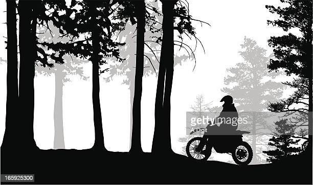 forest racer vector silhouette - motocross stock illustrations, clip art, cartoons, & icons