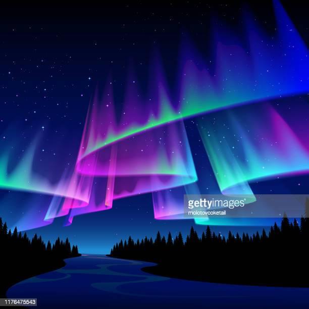waldszene mit aurora - schöne natur stock-grafiken, -clipart, -cartoons und -symbole