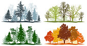 Forest trees winter spring summer autumn. 4 seasons vector illustration