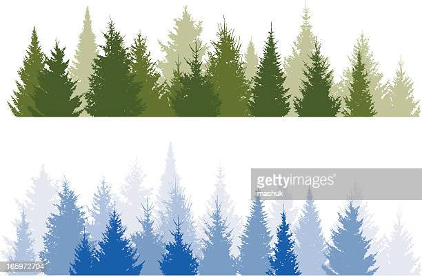 forest - coniferous tree stock illustrations, clip art, cartoons, & icons