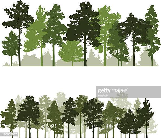 forest - pine wood material stock illustrations, clip art, cartoons, & icons
