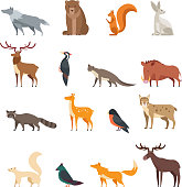 Forest wild animals and birds cartoon vector set isolated. Flat deer, bear, rabbit, squirrel, wolf, fox, raccoon, owl