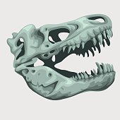 Fossilized head of a giant animal