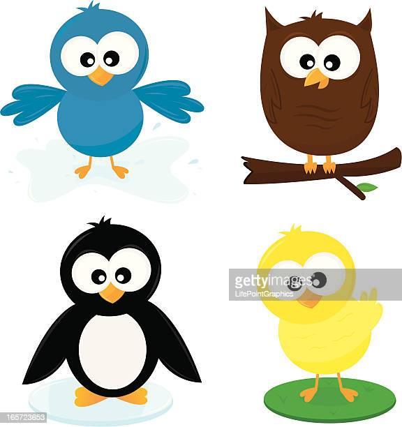 Four Cute Cartoon Birds
