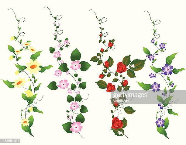 four different vine set - rose flower stock illustrations, clip art, cartoons, & icons