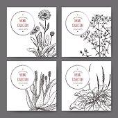 four herbal labels with calendula, saint john wort, aloe, plantago