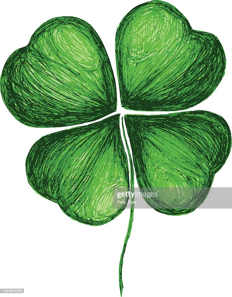 Four leaf clover hand drawing