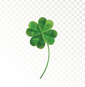 Four Leaf Clover on a transparent background.