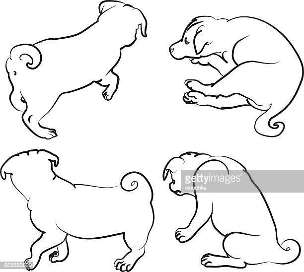 illustrations, cliparts, dessins animés et icônes de quatre chiots - chien humour