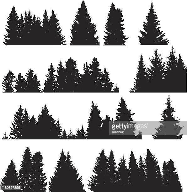 four rows of black on white fir trees - coniferous tree stock illustrations, clip art, cartoons, & icons