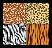 Four seamless exotic animal skin patterns