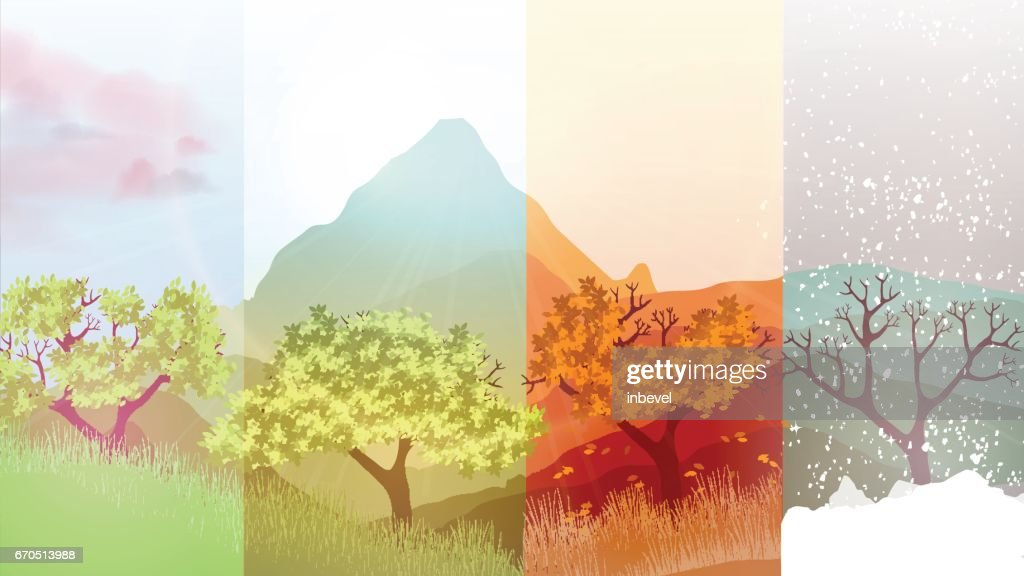 four seasons banners with abstract trees on forest background vector