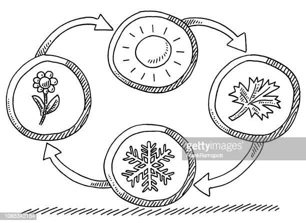 ilustraciones, imágenes clip art, dibujos animados e iconos de stock de cuatro estaciones del año verano otoño invierno primavera dibujo - las cuatro estaciones