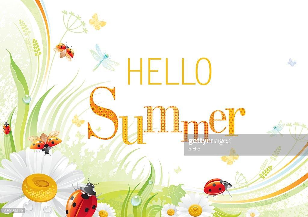 Four seasons: Summer banner, ladybug