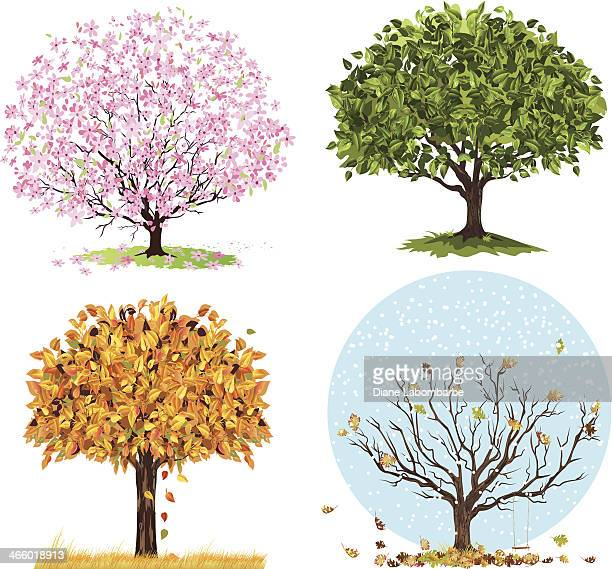four seasons trees - flowering trees stock illustrations, clip art, cartoons, & icons