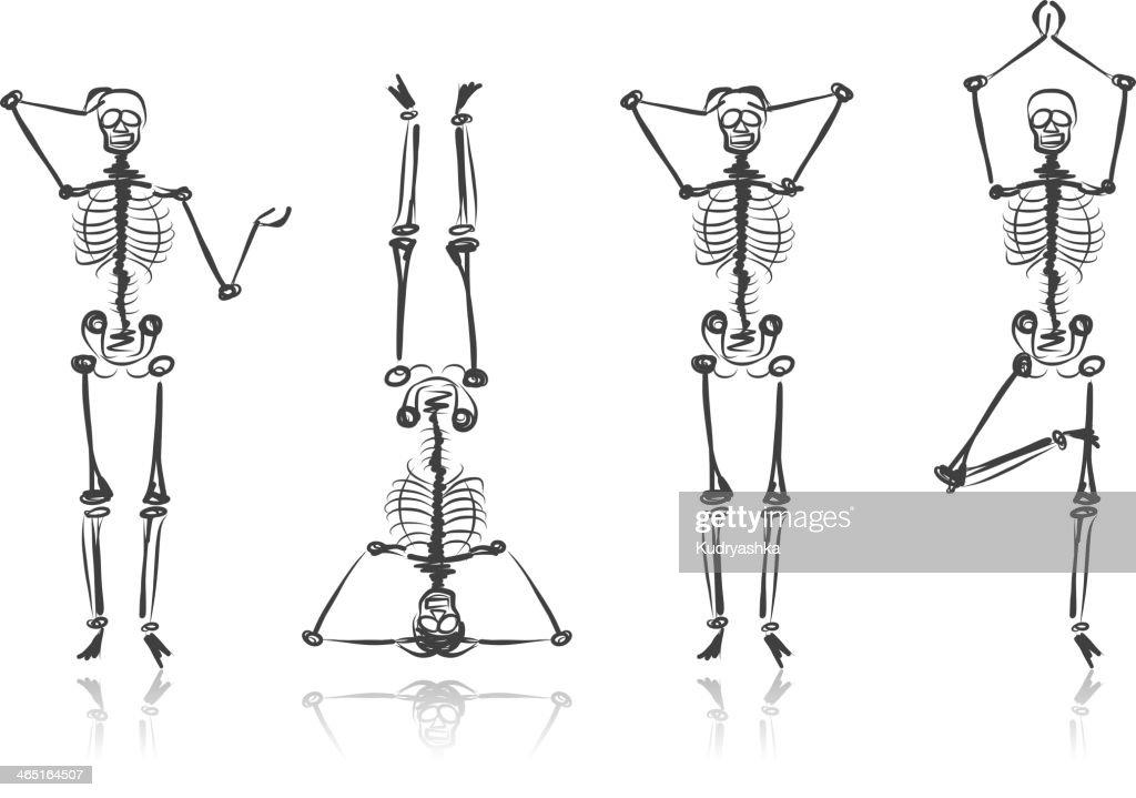 Four skeleton sketches in various poses