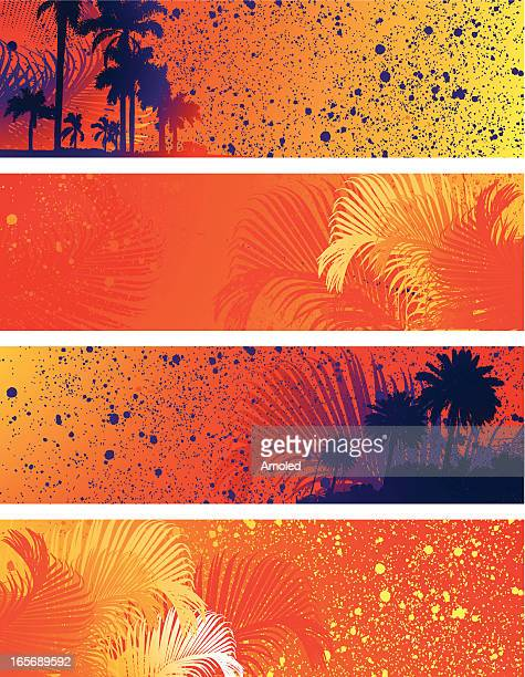 Four Tropical Banner Collection