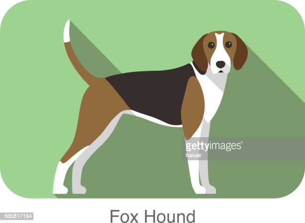 fox hound terrier standing and watching, vector illustration