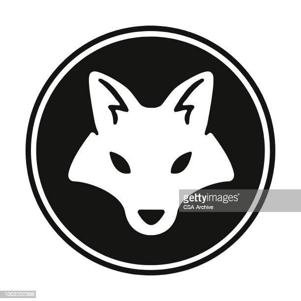 ilustrações de stock, clip art, desenhos animados e ícones de fox - lobo