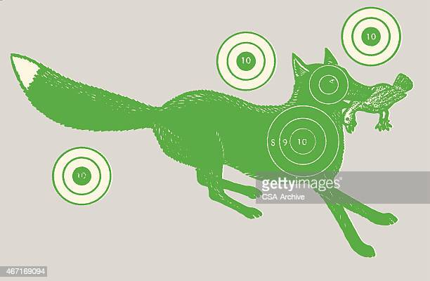 Fox with Bird in Mouth Surrounded by Four Targets
