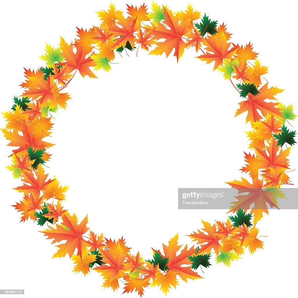 Frame of orange autumn maple leaves