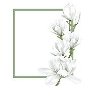 frame with white flower