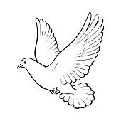 Free flying white dove, isolated sketch style illustration