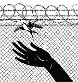 Freedom Sparrow Prison Release