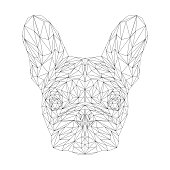 French bulldog dog animal low poly design. Triangle vector illustration.