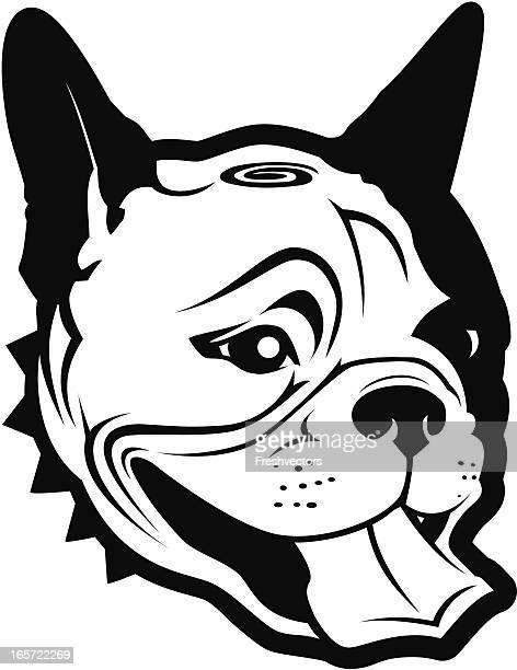 desenhos animados e ilustrações de stock de buldogue francês getty