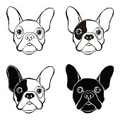 French Bulldog. Vector set of  bulldog's face. Sketch, four variants.